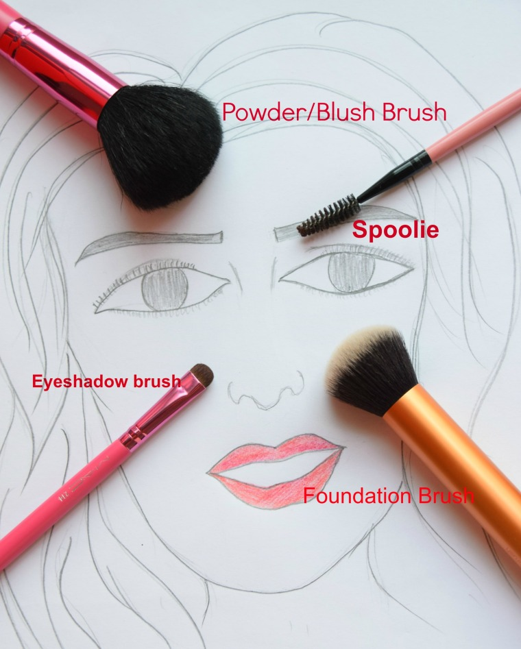 Make up brushes for beginner